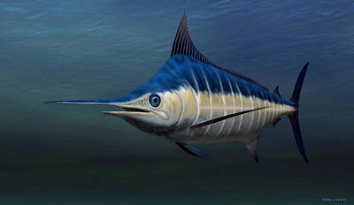 Digital Art - Blue Marlin by Walter Colvin