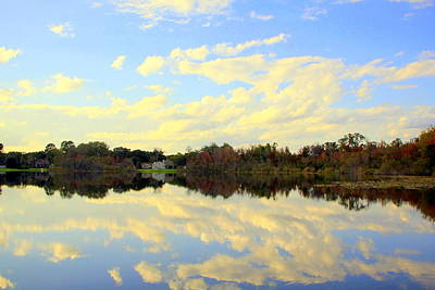 Photograph - Blue Reflections by RobLew Photography