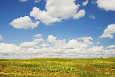 Photograph - Blue Sky And Clouds Over Blueberry Field In Maine by Keith Webber Jr