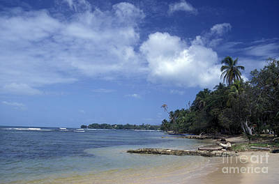 Photograph - Bocas Del Toro Beach Panama by John  Mitchell