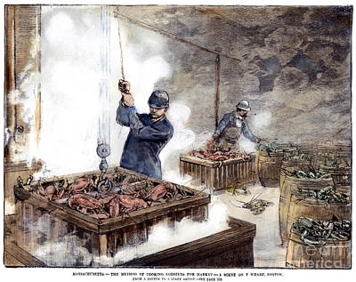 Boiling Lobsters, 1886 Art Print