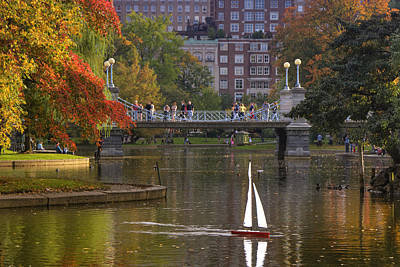 Boston Public Garden Art Print