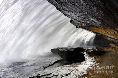 Bridal Veil Falls In Dupont State Park Nc Art Print by Dustin K Ryan