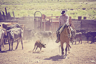 Cowboy Life Photograph - Bringin Em To The Fire by Megan Chambers