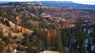 Photograph - Bryce Canyon Utah 2 by Sheila Kay McIntyre