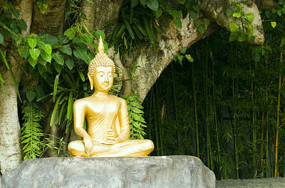 Photograph - Buddha Statue Under Green Tree In Meditative Posture by Ulrich Schade
