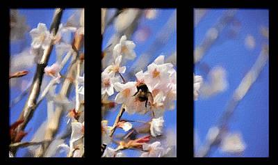 Garden Fruits - Bumble Bee by Svetlana Sewell