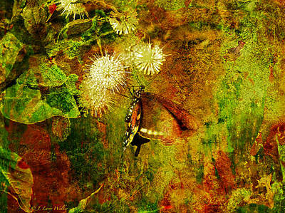 Digital Art - Butterfly On Buttonbush by J Larry Walker
