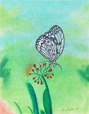 Butterfly Art Print by Susan Schmitz