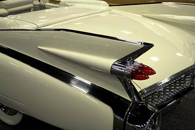Caddy Fin Art Print by Terry Thomas