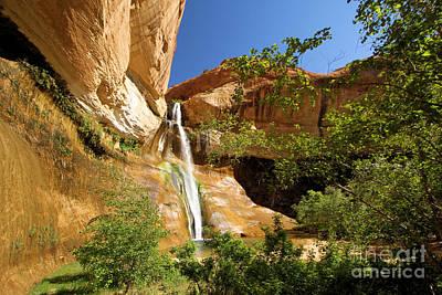 Photograph - Calf Creek Falls Canyon by Adam Jewell