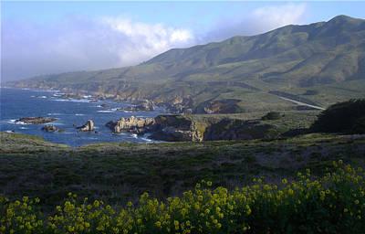 California Coast Art Print by Cyndi Combs