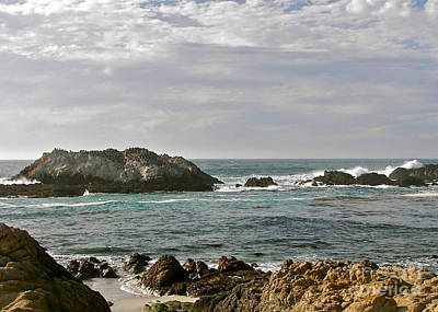 Photograph - California Dreaming by Carol  Bradley