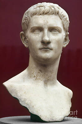Photograph - Caligula (12-41 A.d.) by Granger
