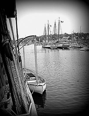 Photograph - Camden Harbor by Doug Mills