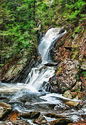 Photograph - Campbell Falls by Fred LeBlanc