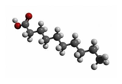 Capric Acid Molecule Art Print by Friedrich Saurer