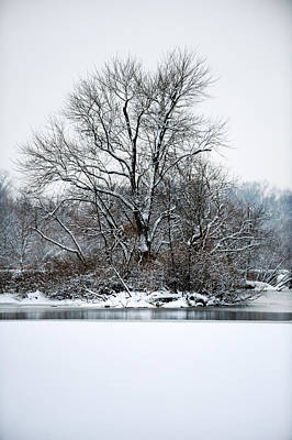 Photograph - Carnegie Lake by Frank DiGiovanni