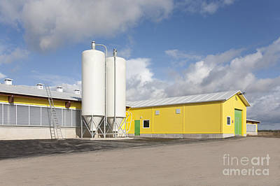 Cowhouse Photograph - Cattle Feeding Tanks by Jaak Nilson
