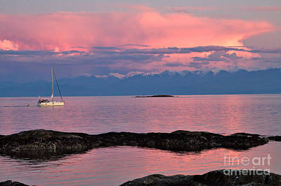 Cattle Point And The Strait Of Juan De Fuca Art Print