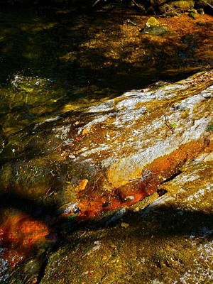 Childs Brook Shadows 4 Art Print by George Ramos