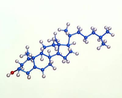 Molecular Graphic Photograph - Cholesterol Molecule by Laguna Design