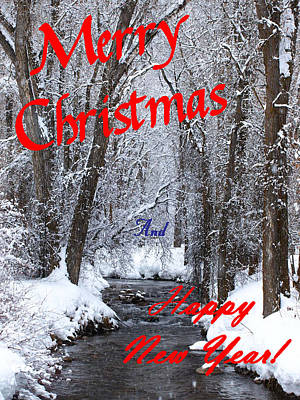 Photograph - Christmas Along The Creek by DeeLon Merritt