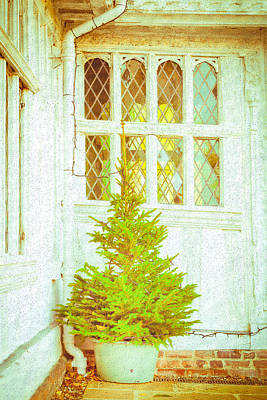 Christmas Tree Art Print by Tom Gowanlock