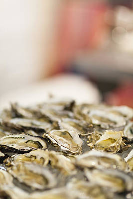 Y120831 Photograph - Close Up Of Bowl Of Oysters by Hybrid Images