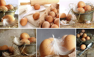 Collage Of Brown Eggs Images  Art Print by Sandra Cunningham