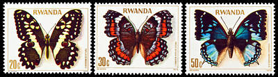 Collection Of Butterflies Stamps. Print by Fernando Barozza