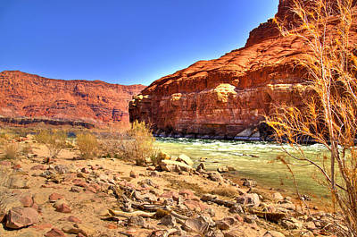 Colorado River  Art Print by Jon Berghoff