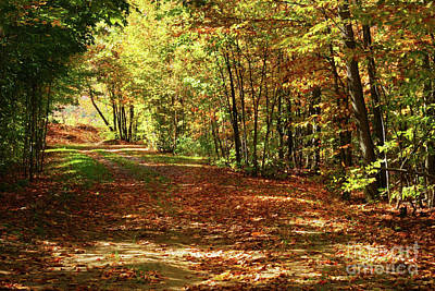 Vivid Fall Colors Photograph - Colorful Autumn Afternoon by Sandra Cunningham
