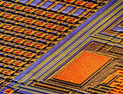 Coloured Sem Of Surface Of An Eprom Silicon Chip Art Print by Dr Jeremy Burgess