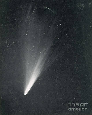 Telescopic Image Photograph - Comet West, 1976 by Science Source