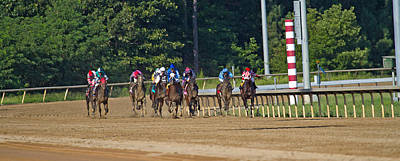 Blood Bay Horse Photograph - Coming Home  by Betsy Knapp
