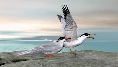 Digital Art - Common Tern by Walter Colvin