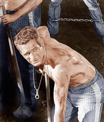 Incol Photograph - Cool Hand Luke, Paul Newman, 1967 by Everett