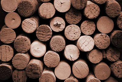 Grape Photograph - Cork Wine by Isabel Poulin