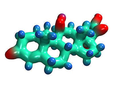 Cortisol Hormone Molecule Art Print by Dr Mark J. Winter