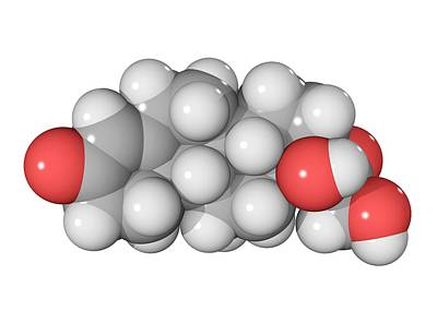 Cortisol Hormone Molecule Art Print by Laguna Design
