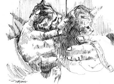 Sethweaver Drawing - Cradling Kittens by Seth Weaver