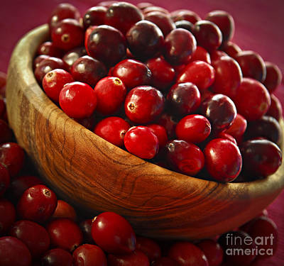 Sour Photograph - Cranberries In A Bowl by Elena Elisseeva