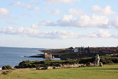 Photograph - Craster View by Ed Lukas