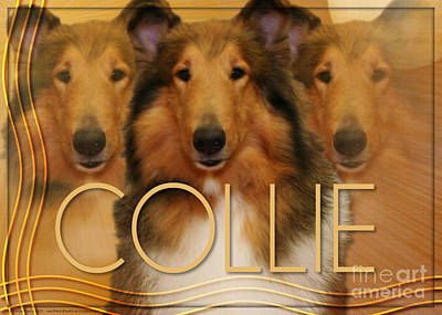 Breed Digital Art - Crescent Moon - Collie by Renae Laughner