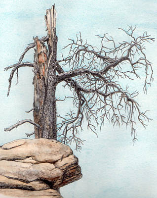 Painting - Dead Tree by Inger Hutton