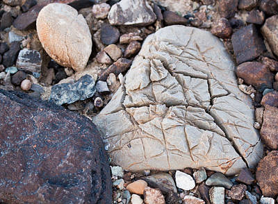 Photograph - Death Valley Rock by Jean Noren