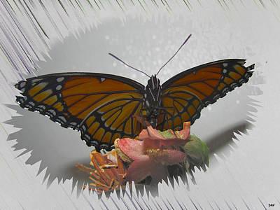 Designer Butterfly Collection Art Print by Debra     Vatalaro