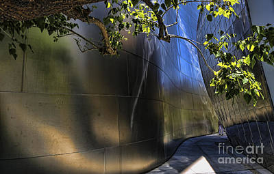 Disney Music Hall Photograph - Disney Music Hall Viii by Chuck Kuhn