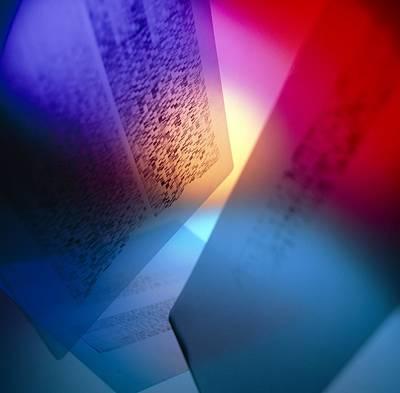Dna Fingerprints: Banding On Dna Autoradiograms Art Print by Tek Image